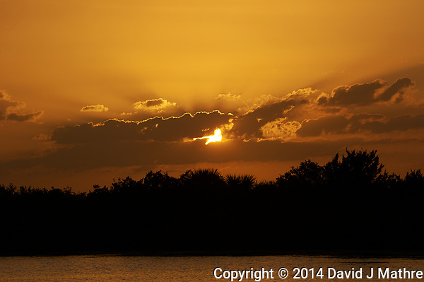 Sunset From Merritt Island National Wildlife Refuge in Florida. Image taken with a Nikon D3s camera and 80-400 mm VRII lens (ISO 200, 260 mm, f/16, 1/320 sec). (David J Mathre)