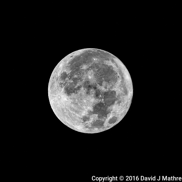 Full Moon. Autumn Nature in New Jersey. Image taken with a Fuji X-T1 camera and 100-400 mm OIS lens (ISO 200, 400 mm, f/16, 1/250 sec). (David J Mathre)