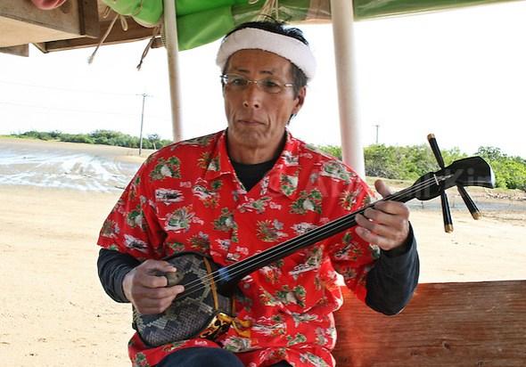 Man playing the sanshin guitar, part of Ryukyu culture in Yaeyama Islands, Okinawa