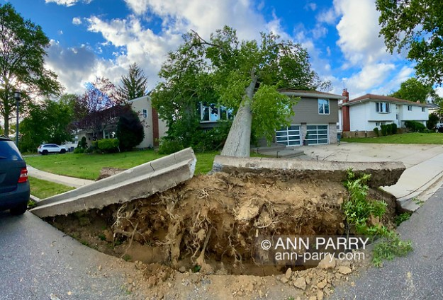 North Merrick, New York, U.S. August 4, 2020. Tropical Storm Isaias slams into Long Island, causing widespread tree damage and power outages. (© 2020 Ann Parry/Ann-Parry.com)