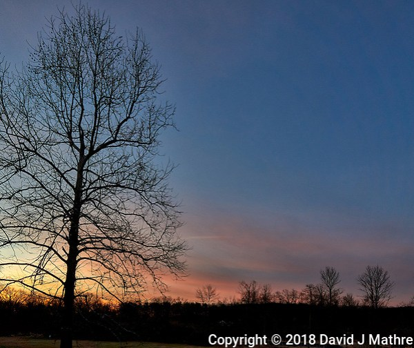 Winter Dawn Sky and Clouds in New Jersey from My Backyard. Image taken with a Leica T camera and 11-23 mm lens (ISO 100, 13 mm, f/8, 1/60 sec). (David J Mathre)