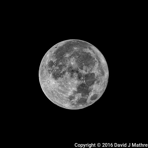 Full Moon. Autumn Nature in New Jersey. Image taken with a Nikon D3x camera and 600 mm f/4 VR lens (ISO 100, 600 mm, f/5.6, 1/800 sec) (David J Mathre)