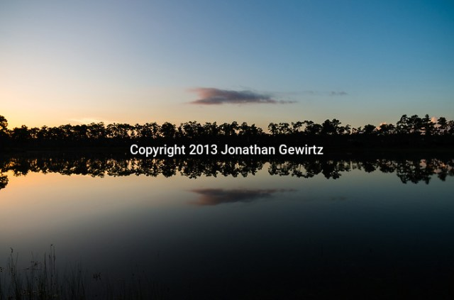 Early-morning clouds reflect from the surface of the pond at Long Pine Key in Everglades National Park, Florida. (Jonathan.Gewirtz@gmail.com)
