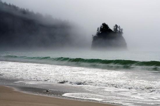 Sea stack on Washington Coast in fog, near Toleak Point, South Coast Trail, Olympic National Park, Washington, USA (Brad Mitchell Photography)