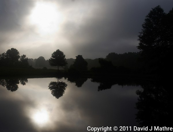 Morning Reflection Silhouette at Sourland Mountain Reserve. Early Summer in New Jersey. Image taken with a Leica X1 (ISO 100, 24 mm, f/6.3, 1/1250 sec). Raw image processed with Capture One Pro and Photoshop CS5. (David J Mathre)