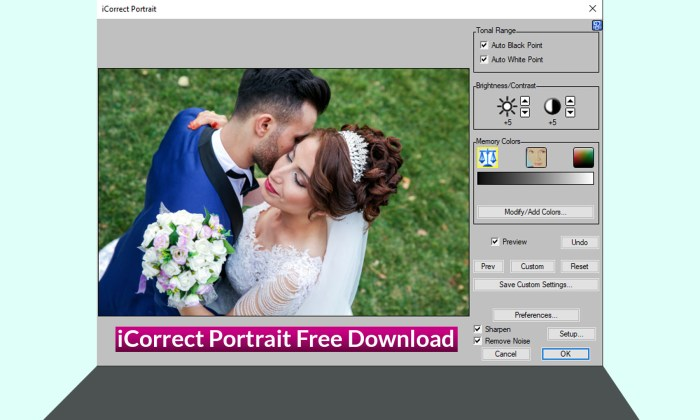 iCorrect Portrait Free Download