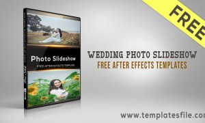 Wedding Photo Slideshow Templates Free Download Free After Effects Templates