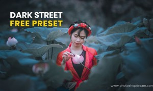 Best Dark Street Preset Download - Black Preset Download