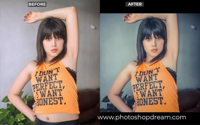 camera raw presets free download,