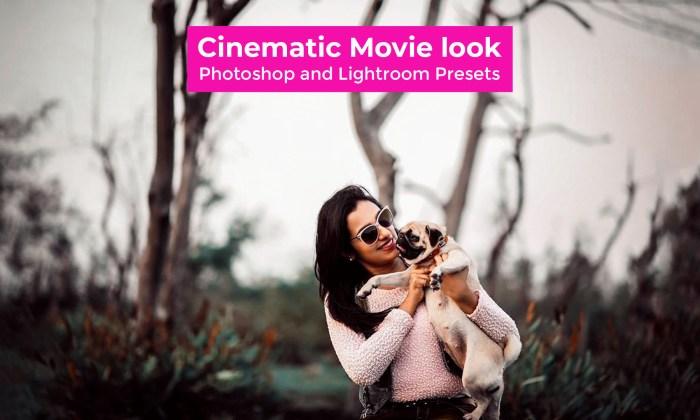 Best 30 Cinematic Movie look Camera Raw Presets Free Download