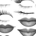 Labios y pestañas pinceles