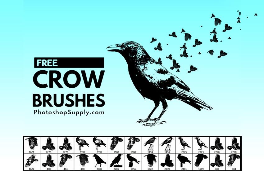 Flying Birds Photoshop Brushes