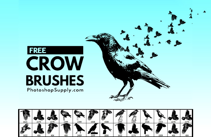 FREE) Crow Brushes - Photoshop Supply