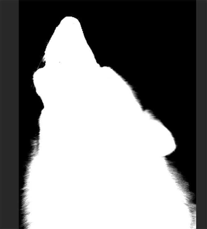step8e-wolf