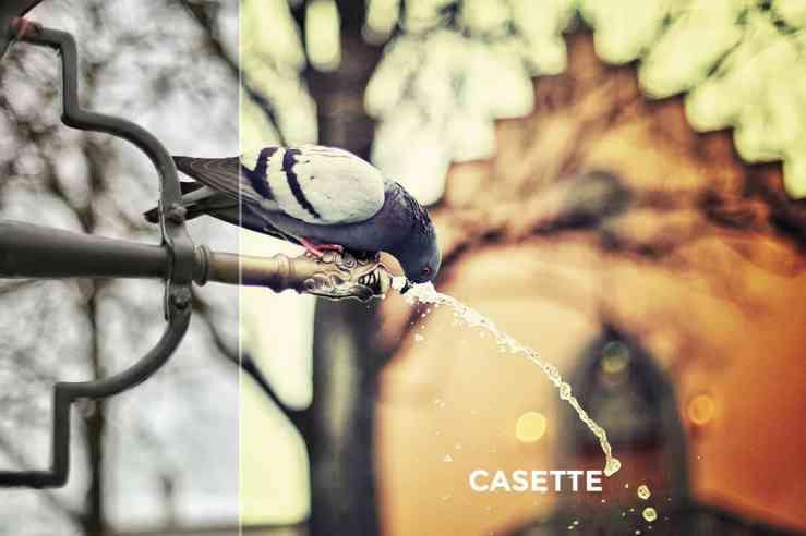 Adobe photoshop instagram filters download