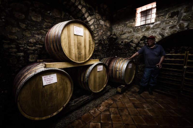 Aglianico Grape Harvesting - The Winemaker