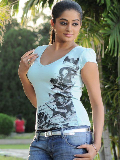 South Actress Priyamani Wiki Biography and Photo