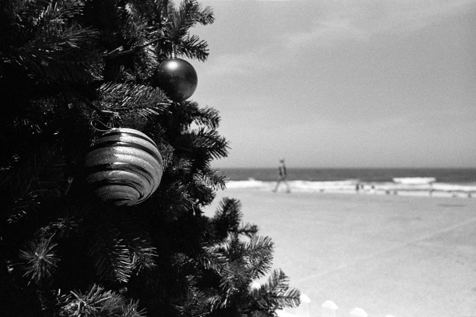 Christmas tree Maroubra Beach, Nikon F2, Nikkor-S 35mm f/2.8 Auto, Kodak Tri-X 400