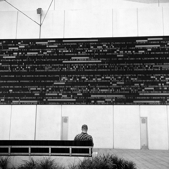 Darling Harbour digital wall | Walzflex | Kodak Tri-X 400