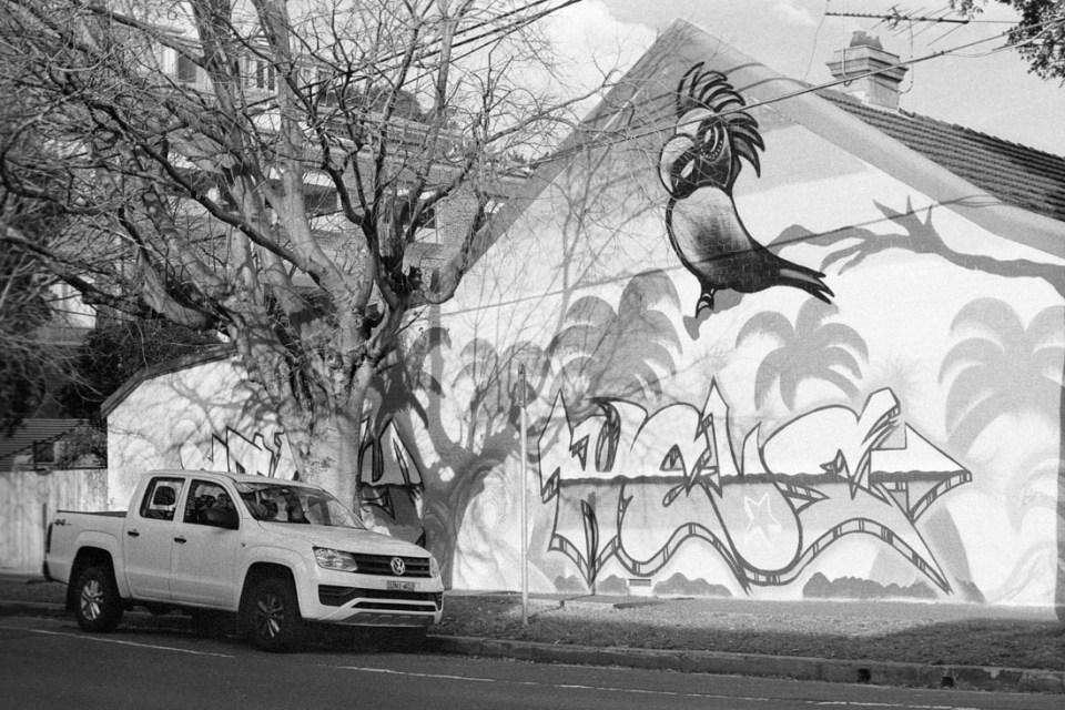 Graffiti/Mural | Topcon RE Super | Topcor 58mm f/1.4 RE Auto | Fujifilm Neopan 400 (Presto)