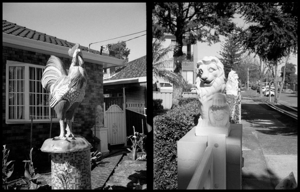 Garden creatures, diptych | Agfa Optima-Parat | Ilford FP4 Plus