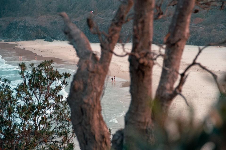 Beach through the trees | Nikon F100 | Nikkor 28-105mm 1:3.5-4.5 AF D | Kodak Ektar 100
