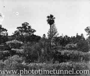 View of Hollywood Pleasure Grounds, Lansvale, Sydney, circa 1928. (10)