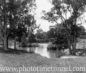 View of Hollywood Pleasure Grounds, Lansvale, Sydney, circa 1928. (5)