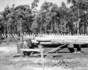 Timber at a coalmine near Newcastle, NSW, circa 1940s.