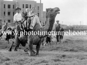 Camel wrangler Dick Jones selling rides to schoolchildren in Newcastle, October 21, 1937. (1)