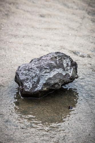 干潮後の浜辺の石
