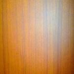 食相関写真画像素材 [PHOTOTORA] - F0000105pre