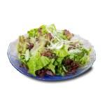 洋蔥生菜沙拉的去背退地食物素材相片