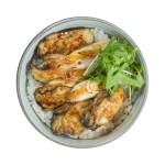 蔥油焗蠔蓋飯的去背退地食物素材相片