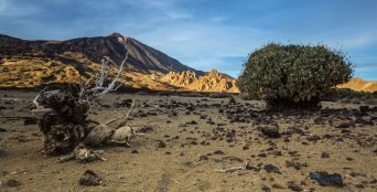 Teide Vista | © Bruno Mooser