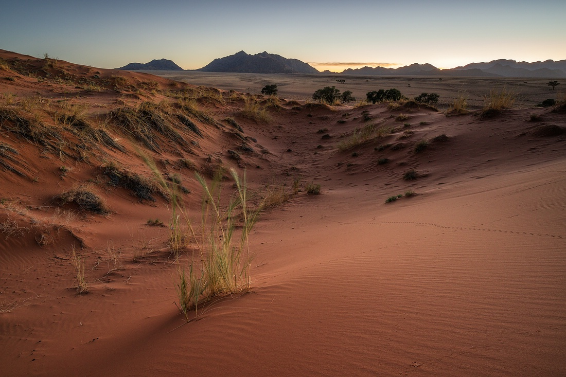 Elim Düne Namib Wüste © Raik Krotofil