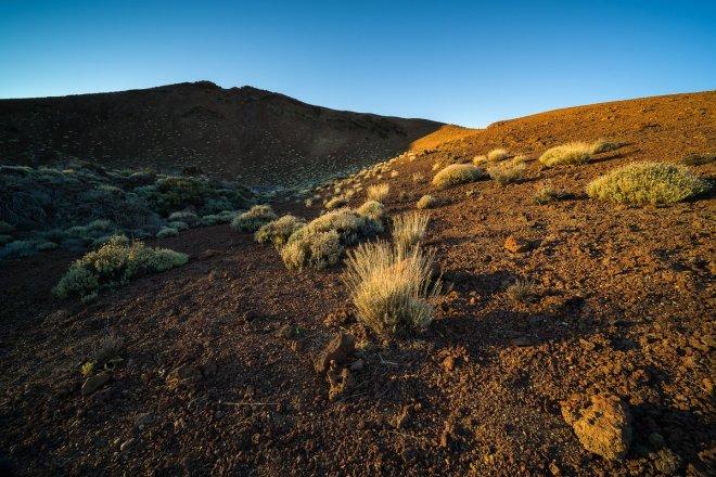 Teide Sunrise © Raik Krotofil