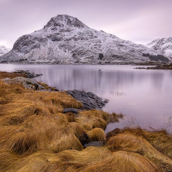 Fotoreise Golden Gras Lofoten © Raik Krotofil, Norwegen, Lofoten, Polarlicht, Aurora, Schnee, Winter, Januar, beste Fotoreise