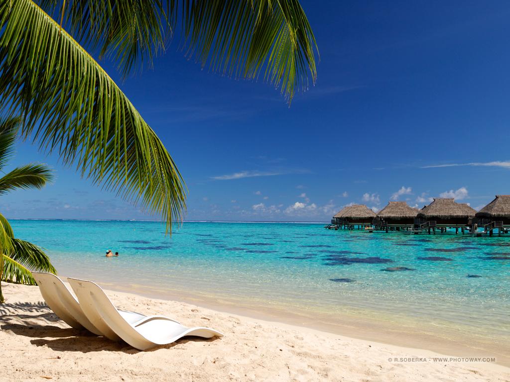 Fond D Ecran De Vacances Fonds D Ecran Vacances Wallpaper Polynesie