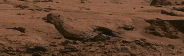 """""""Wind erosion has shaped this Mars rock into something resembling a bird from this point of view."""" Image Credit: NASA/JPL-Caltech/MSSS."""