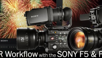 Sony's Rollable OLED Display – Photoxels