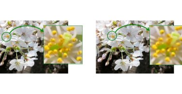 Sony: Comparison of images on OLED Microdisplays: New product (UXGA, left) and previous product (QVGA, right)