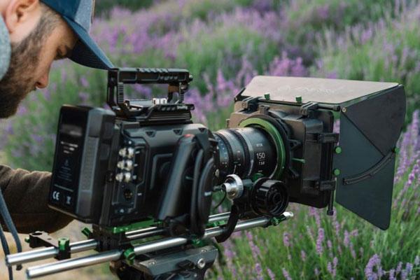 Irix Cine 150mm T3.0 Macro 1:1: Image Courtesy of Irix