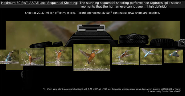 Olympus OM-D E-M1 Mark III: Images Courtesy of Olympus: 60 fps shooting performance captures split-second moments in high resolution utilizing AF/AE lock sequential shooting