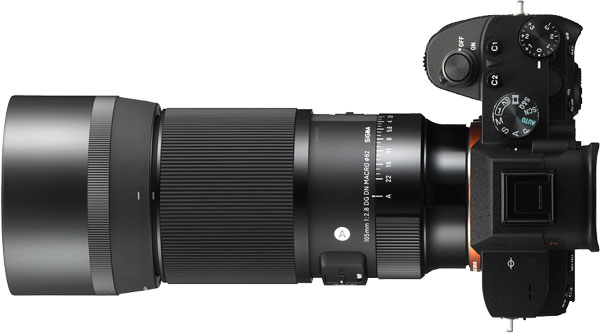 SIGMA 105mm F2.8 DG DN Macro | Art on Sony E-Mount