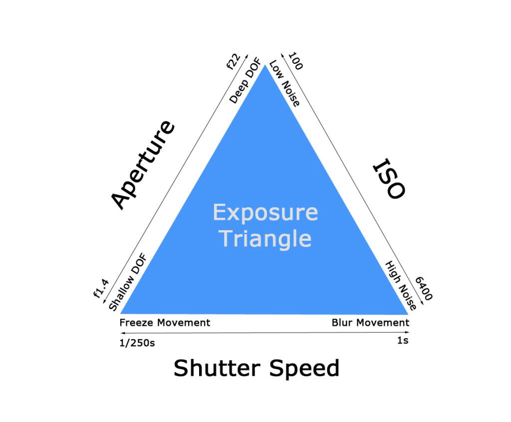 Triangle Basic Worksheet