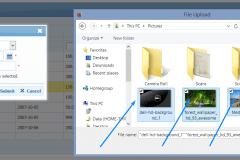 File Upload (multiple)