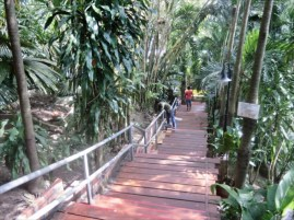 TUNK KA CAFE ( トゥンカ・カフェ )  急な階段を下ります。
