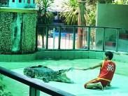 phuket_zoo_8516 (8)