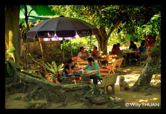 kathu-restaurant
